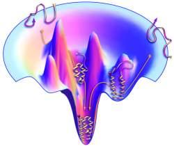 Dill protein funnel figure